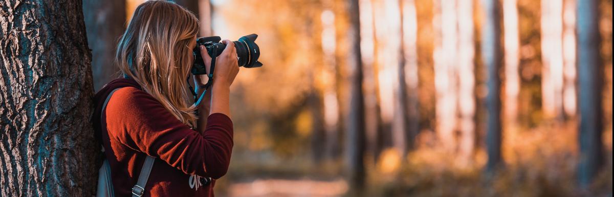 Die besten WordPress-Themes für Fotografen 2019